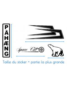 Stickers KAWASAKI team racing JET SKI VNM, scooter des mers